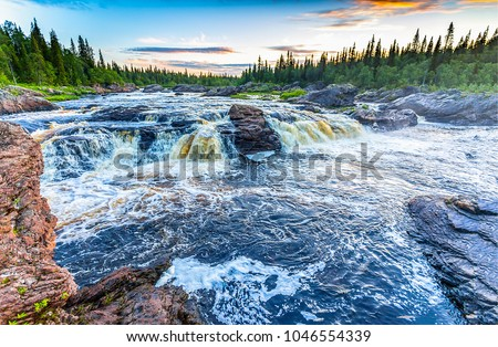 Forest wild river rapids landscape