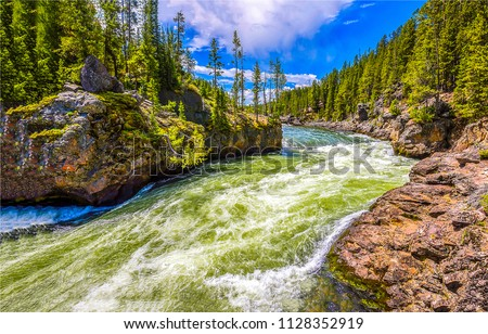 Forest wild river stream landscape #1128352919