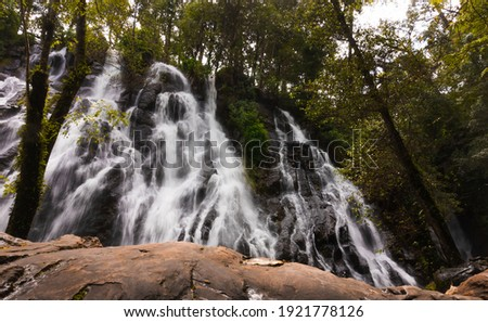 forest with a huge waterfall of silky water. Valle de Bravo place Foto stock ©