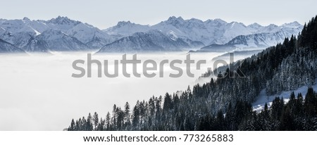 Forested mountain slope and mountain range in low lying valley fog with silhouettes of evergreen conifers shrouded in mist. Scenic snowy winter landscape in Alps, Bavaria, Germany. #773265883