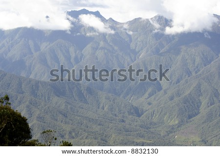 Forested mountainside in southern ecuador