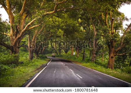 Forested road in Jharkhand India. Jonha forest near Ranchi. Indian Autorickshaw plying on road among trees.