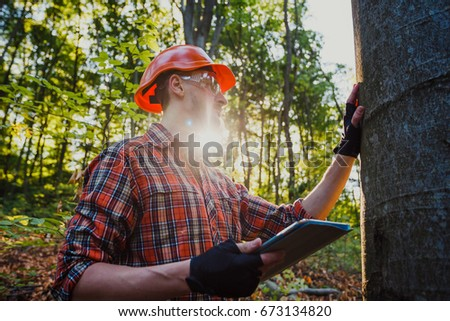 Forester examines the trees in the forest using a tablet pc
