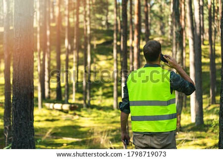 forester is watching the development of the forest. forestry and afforestation Stock photo ©