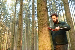 Foresters in the determination of the trunk diameter of tree in the forest district