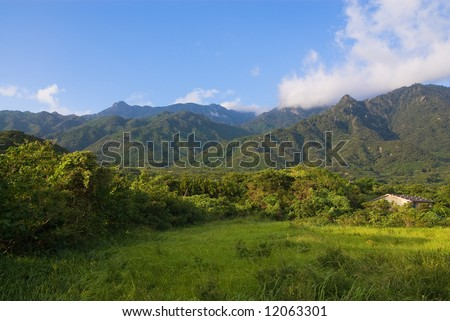 Forests and mountains of Yakushima national park