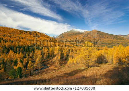Forests and mountains, West Siberia, Altai mountains, Katun ridge.
