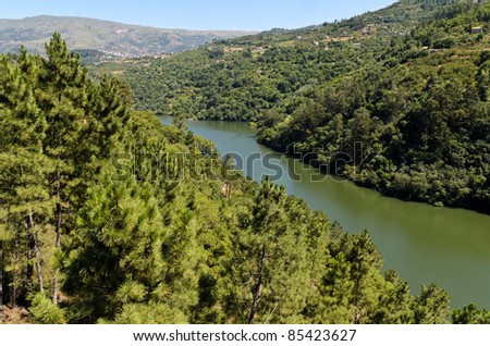 Forests on the banks of Douro river near Resende, Portugal - stock photo