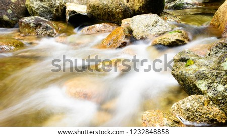 Forests, streams and streams