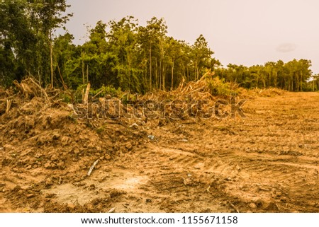 Forests that were invaded by human beings are the cause of global warming. #1155671158
