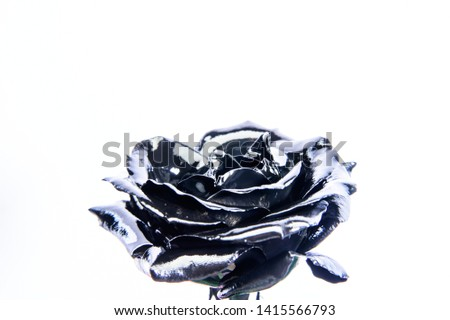 Forging and sculpture. Beautiful black silver flower. Floral shop. Metallic steel color. Flower covered metallic paint close up. Metal flower. Abstract art. Eternal beauty. Botany concept. #1415566793