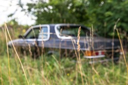 Forgotten Car Wreck on a Scrapyard (Selective Focus)
