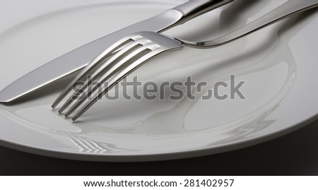 Fork and knife on a plate  #281402957