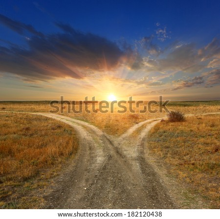 Fork roads in steppe on sunset background #182120438