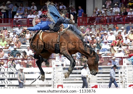 Former World Champion Bareback rider, Kelly Timberman, makes a successful ride at the 2005 Cheyenne Frontier Days rodeo (editorial).