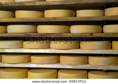 forms of cheese ripening