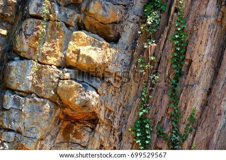 Forms of soil layers and rock layers #699529567