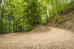 Forrest path at Uracher Wasserfälle, Bad Urach, Germany