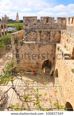 Fortification of the Jerusalem's old city and interior of the Fortress yard  twined a grapevine