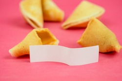 Fortune Cookie on a crimson background. Close-up of foreboding broken cookies with white piece of paper with copy space on a dark pink background