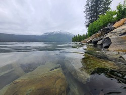 found this beautiful are right along Lake McDonald, Glacier National park.