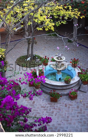 fountain and trees in the inner patio of a colonial house  of the town of Alamos, in the northern state of Sonora, Mexico, Latin America