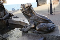 Fountain bronze frog
