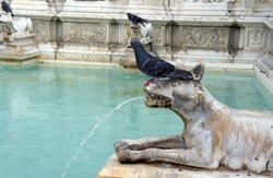 Fountain of Joy - Medieval marble fountain in Siena. Panel of the Fonte Gaia, Piazza del Campo, Siena, Tuscany, Italy