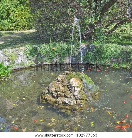 Fountain with goldfishes at Aglie castle, Piedmont, Italy