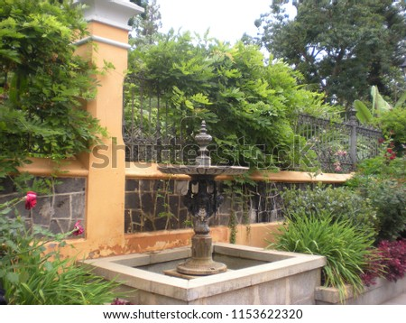 fountain with vegetation around #1153622320