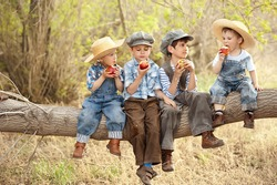 Four boys eat apples sitting on a tree branch in a sunny summer day
