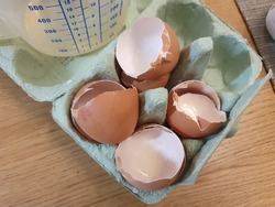Four broken eggshells in an egg carton packaging having been used as a cooking ingredient and ready to be recycled as food waste
