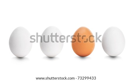 Four chicken egg on white background