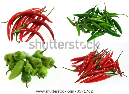 four different kinds of chilli: red hot, green and red bird eye, bullet chilli peppers