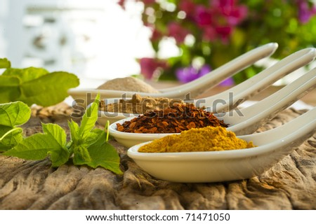 Four different spices in a china spoon, pepper, chili, curry and cumin