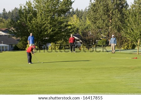 Four elderly men are standing together on a golf course. They are playing golf and one man is about to hit the ball.  Horizontally framed shot.