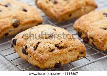Four freshly baked scones on a cooling tray