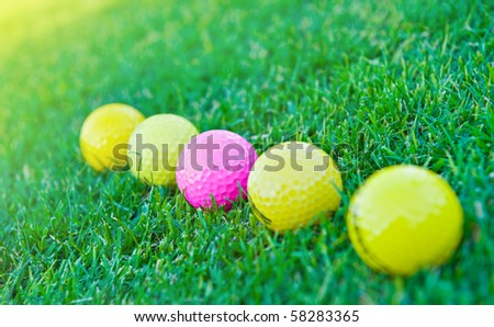 Four golf balls on the green grass.Focus on the pink one.
