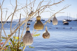 Four handmade, painted lamps made of water pumpkin (Calabash) at seaside of Bodrum city in Turkey. Yachts, Aegean sea are in the background. This lighting is used in the region for decoration.