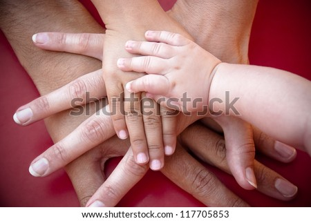Four hands of the family,  a baby, a daughter,  a mother and a father. Concept of unity, support, protection and happiness.