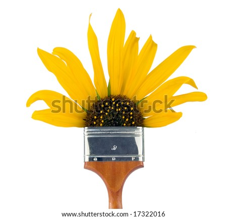 Four inch paintbrush with sunflower as the bristles.