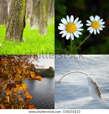 Four season. All used photos belong to me.