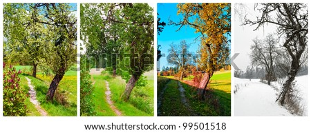 four seasons - Shutterstock ID 99501518