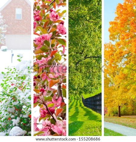 Four Seasons Collage. Set Of Beautiful Landscapes At Winter, Spring, Summer And Autumn.