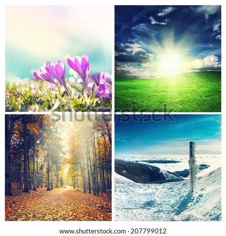 four seasons collage, several images of beautiful natural landscapes at different time of the year - winter spring, summer, autumn,