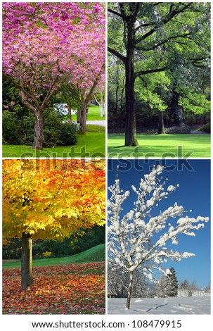 Four Seasons Collage: Spring, Summer, Autumn, Winter.