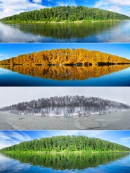 Four seasons collage :  summer, fall,  winter and spring. Set of the same landscapes of forest  lake. Panorama.