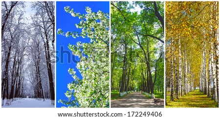 Four seasons collage: Winter, Spring, Summer, Autumn - Shutterstock ID 172249406