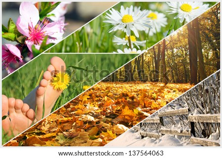 four seasons / four seasons