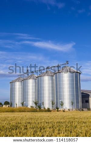 four silver silos in corn field